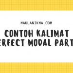 Contoh Kalimat Perfect Modal PART 1