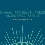 Penggunaan Pronouns: Possessive Adjectives Part 3