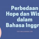 Perbedaan Hope dan Wish dalam Bahasa Inggris