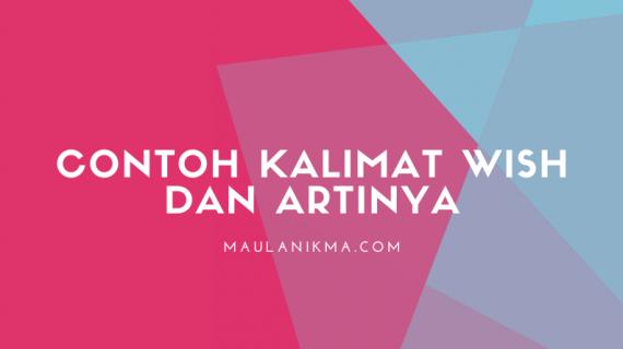 Contoh Kalimat Wish dan Artinya dalam Bahasa Indonesia